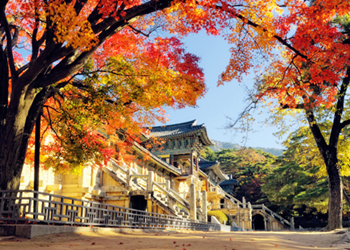 Gyeongju tour
