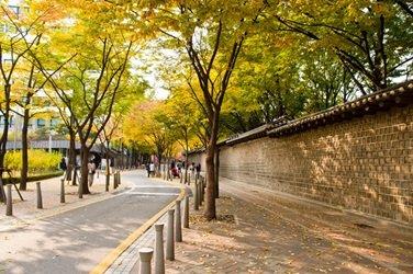 Seoul Autumn Tour